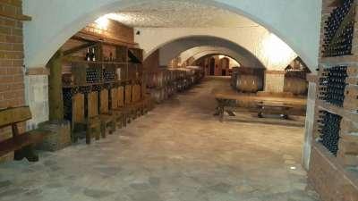 Peljesac Weinverkostung